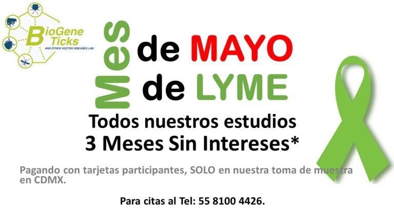 Mes de Mayo Mes Lyme